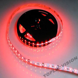 Red Color LED Sctrip 60LEDs/M pictures & photos