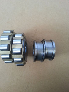 Special Cylindrical Roller Bearing 250752904 Eccentric Bearing pictures & photos