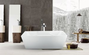 Square Freestanding Whirlpool Baths Tub with Jets Massage Shower Use in Bath Room pictures & photos