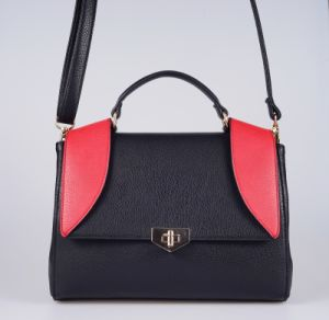 2016 Self New Designer Handbags-12 (LD-2890) pictures & photos