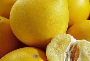 Citrus Paradisi Macfadyen Extract pictures & photos
