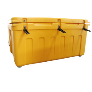 Packaging Plastic Box Insulated Cooler Bag/Box pictures & photos