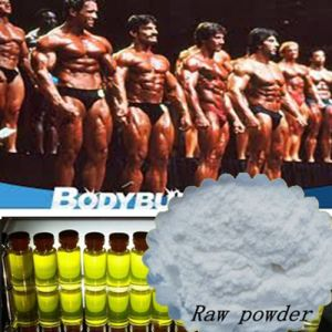 Natural Steroids Enhancement Supplements Testosterone Phenylpropionate for Man pictures & photos