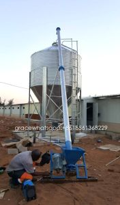 Complete Set Poultry Farming Feed Silo for Livestock Farm pictures & photos