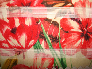 Solid Jacquard Mess Fabric pictures & photos
