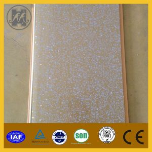 Decorative PVC Wall Panel and PVC Lamination Panel (PP07) pictures & photos
