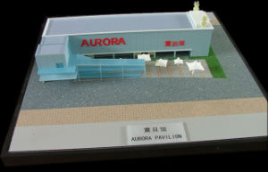 Plastic Miniature Model Making (JW-47) pictures & photos