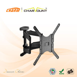 Double Arm Vesa Type TV Mount with Adapters (CT-LCD-L02BV) pictures & photos