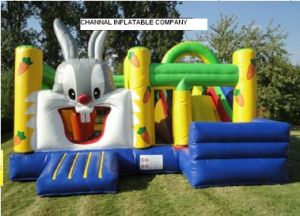 Inflatable Rabiit Jumping Castle Combo pictures & photos