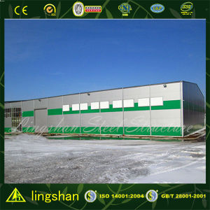 Low Cost Prefabricated Steel Structure Storage with ISO9001 pictures & photos