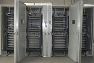 Automatic Egg Incubator Hatching Machine RD-22528