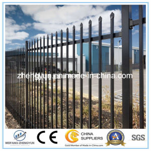 Wholesale! Metal Fence for Garden Fence pictures & photos