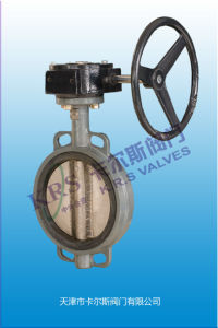 Wafer Type Butterfly Valve (D371X-10/16/150LB) pictures & photos