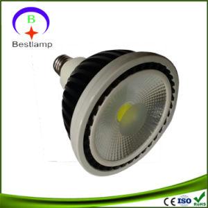 COB LED PAR38 LED Light with Screw Base pictures & photos