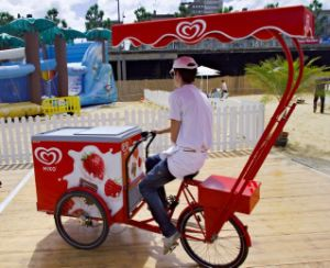 Ice Cream Tricycle Three Wheeler (FP-TRB-J017) pictures & photos