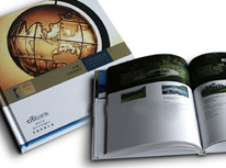 Business Brochure / Print Brochures / Brochure Printing pictures & photos
