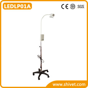 Veterinary Examination Lamp (LED) (LEDLP01A) pictures & photos