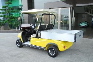 2 Seaters Electric Utility Cargo Car (LT-A2. H2) pictures & photos