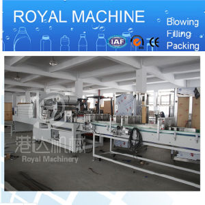 Wrap Packing Machine pictures & photos