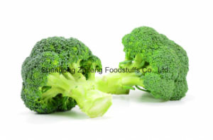 Chinese IQF Frozen Organic Broccoli pictures & photos