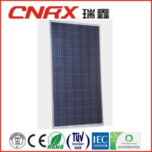 Factory for 320W Poly Solar Panel with TUV Certificate pictures & photos