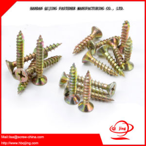 OEM Plastic Self Tapping Screw pictures & photos