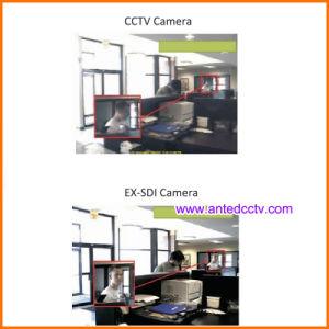 Ex-Sdi Camera Metal Dome Vandalproof IR Dome CCTV Security Camera with Night Vision pictures & photos