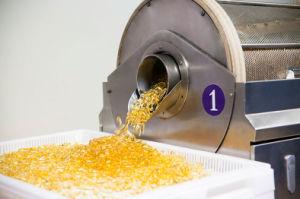 GMP/FDA Omega 3 Fish Oil Capsule OEM pictures & photos