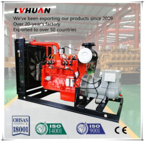 Ce Approved 50 Hz / 60 Hz 380 V Cummins 300 Kw Natural Gas Generator pictures & photos