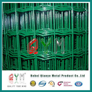 Qym-Roll-Curvy-Welded-Wire-Mesh-Fence pictures & photos