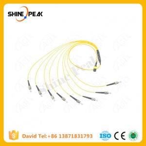 Simplex Duplex 12core 24 Core MTP/MPO Fiber Patch Cord Cable pictures & photos