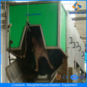 Pig Modern Abattoir with Slaughtering Machines pictures & photos