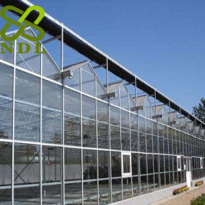 Standard Structure Modern Design Glass Greenhouse pictures & photos