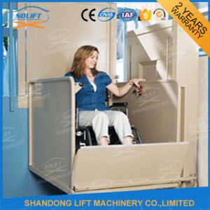 China Supplier Old Man Vertical Platform Wheelchair Lift Price pictures & photos
