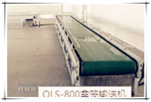 Poultry Cage Conveyor of Chicken Slaughtering Machine pictures & photos