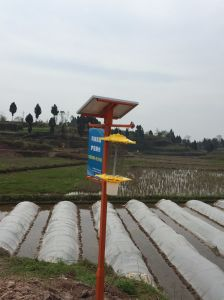 Solar Mosquito Insect Pest Killer for Crops Farm Organic Agriculture pictures & photos
