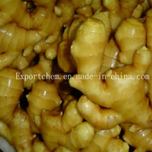 Ginger/Dry Ginger/Fresh Ginger/2016 New Crop Ginger pictures & photos