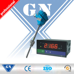 LCD Temperature Indicator pictures & photos