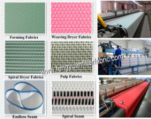 Polyester Fabrics for Paper Mills pictures & photos