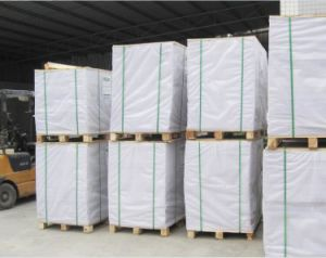 Folding Box Board/Sbs/Fbb pictures & photos