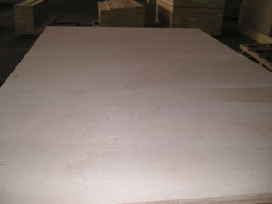 Export 1220X2440X11mm Engineered Flooring Base-Birch Plywood