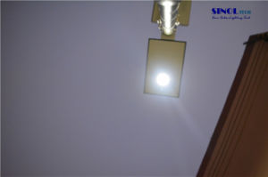 All in One Integrated Solar Motion Sensor LED Outdoor Light (SN-108) pictures & photos
