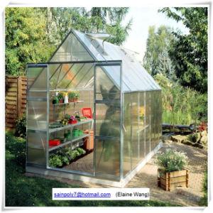 Green aluminium Garden Greenhouse pictures & photos