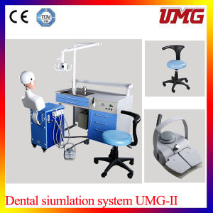 China Dental Supply Dental Phantom pictures & photos