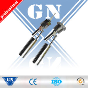Side Mount Magnetic Liquid Float Level Switch (CX-FLM-RF-MHG) pictures & photos