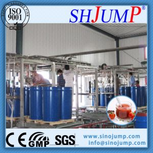 Multi Head Aseptic Filling Machine for Fruit Juice Paste pictures & photos