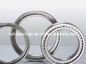 SL1818/1000 Full Complement Bearing pictures & photos