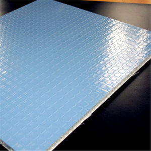Anti-UV Gelcoat FRP Fiberglass PP Honeycomb Panel pictures & photos