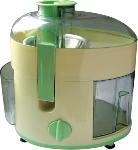 300W Electrical Juicer