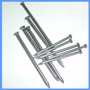 Hot Sale Zinc Plate Common Steel Nail pictures & photos